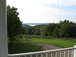Garvin Heights Vineyard
